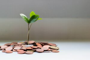 plant sprouting out of a pile of change - How to Afford Rental Property Renovations