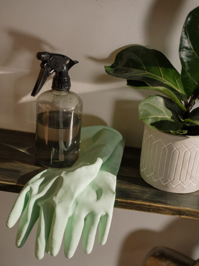 spray bottle, green rubber gloves, plant on shelf- What's clean? Setting your rental cleaning standards